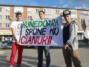 Thumb_hunedoara1